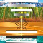 Ortho-Bionomy®: implicazioni sociali e filosofiche delle 7 Fasi – 1° parte